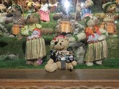 16_JackBearow-Teddy-Bear-World-Hawaii-Waikiki-Honolulu-Oahu