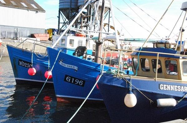 Wicklow_Hafen02