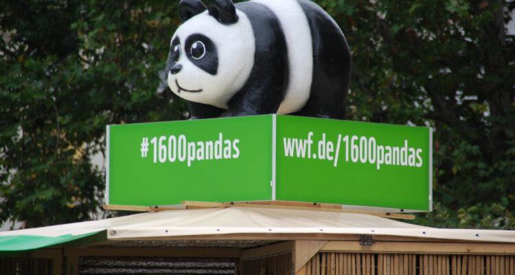 00_WWF-Pandas-on-Tour-Muenchen