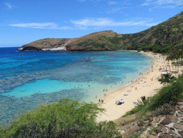 Faszinierende Unterwasserwelt: Hanauma Bay Oahu Hawaii
