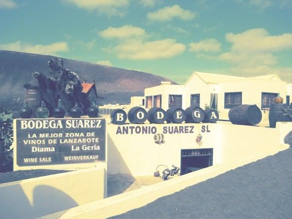 24_Bodega-Suarez-Lanzarote-Kanaren