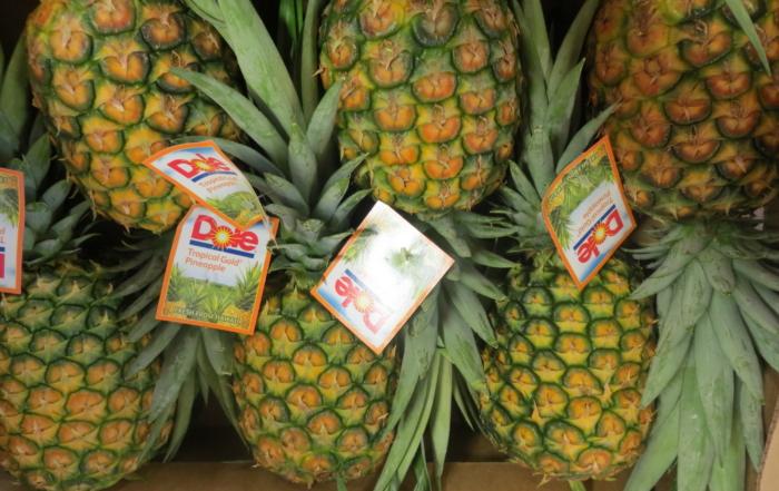 dole plantation ananas oahu hawaii