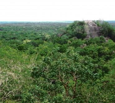 Mexiko: Calakmul – Maya-Ruine im Urwald