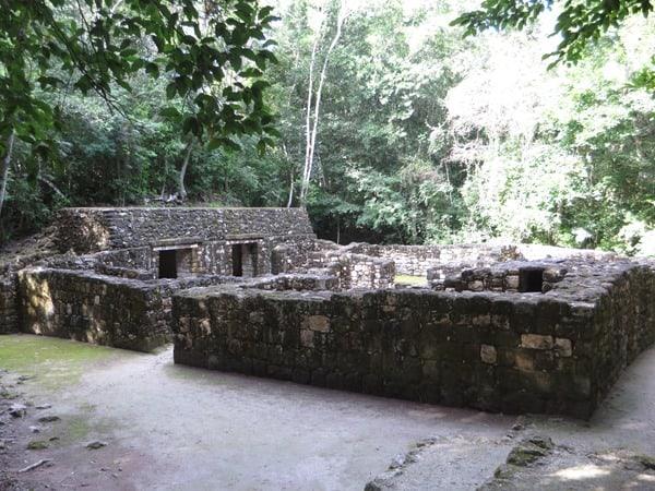 12_Maya-Ruine-Calakmul-Mexiko-Wohngebaeude