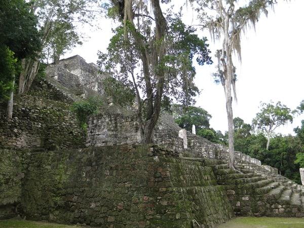 14_Maya-Ruine-Calakmul-Mexiko-Struktur-I-Pyramide-1