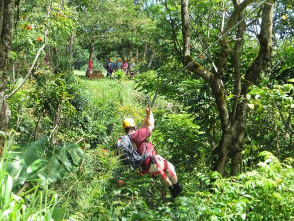 Hawaii: Inselhüpfen mit der NCL Pride of America – Zip Line in Hilo auf Big Island