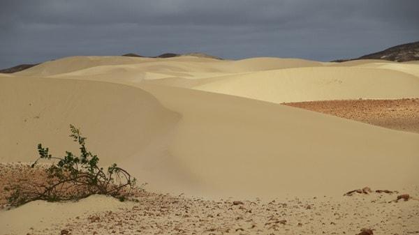 11_Duenen-Wueste-Deserto-Viana-Boa-Vista-Cabo-Verde-Kapverden