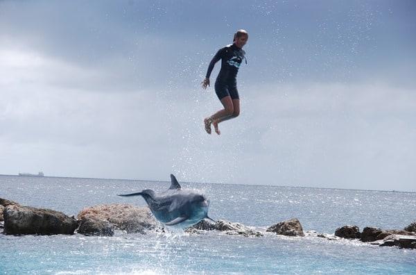 20_Delphinshow-Curacao-Sea-Aquarium