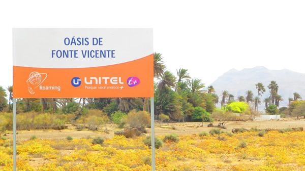 07_Oasis-de-Fonte-Vicente-Boa-Vista-Cabo-Verde