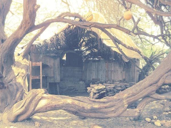 28_versteckte-Huette-der-Naturschuetzer-Boa-Vista-Kapverden