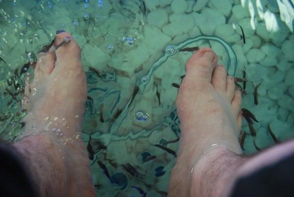 03_Dr.Fish-Rethymno-Kreta-Griechenland