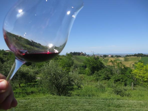00 Sangiovese Wein Tenuta Neri Italien 590x443 1