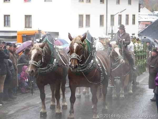 02_Kutsche-Leonhardi-Wallfahrt-Bad-Toelz-Oberbayern-Bayern