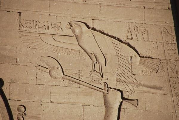 09_Falke-Relief-am-Horus-Tempel-Edfu-Aegypten-Nil-Nilkreuzfahrt