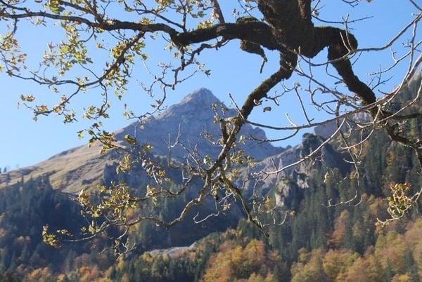11_Herbst-Eng-Tirol-Karwendel-Ahornboden