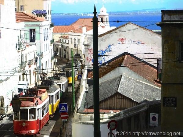 21_Strassenbahnen-Trambahnen-Lissabon-Portugal