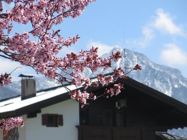 Reiseziel-April-Oesterreich-Fruehling
