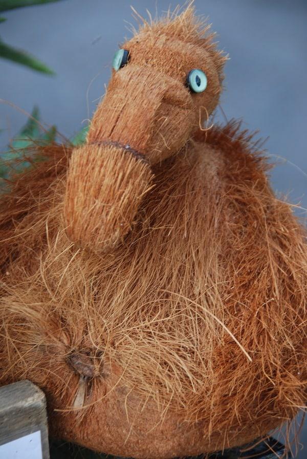 27_Kokosnuss-Dodo-Mauritius