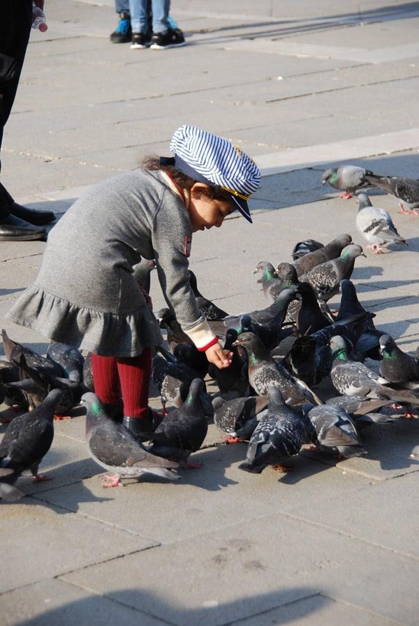 11_Tauben-fuettern-am-Markusplatz-Venedig-Italien