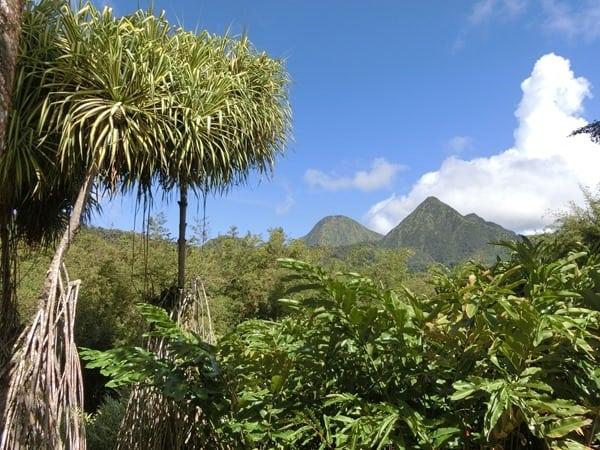 27_Karibik-Martinique-Pittons