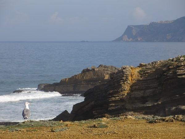 01_Cabo-da-Roca-Strand-Portugal-Moewe