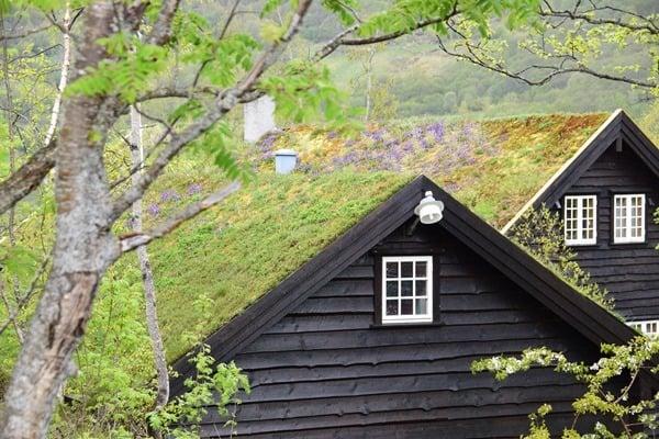 30_Norwegisches-Haus-Grasdach-Geirangerfjord-Norwegen