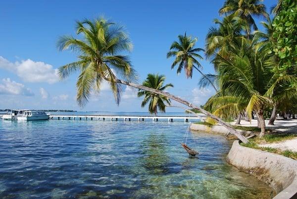 02_Malediven-Urlaub-Bootssteg-Palme