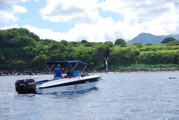 10_Boot-Delfine-Delfin-Tour-Mauritius