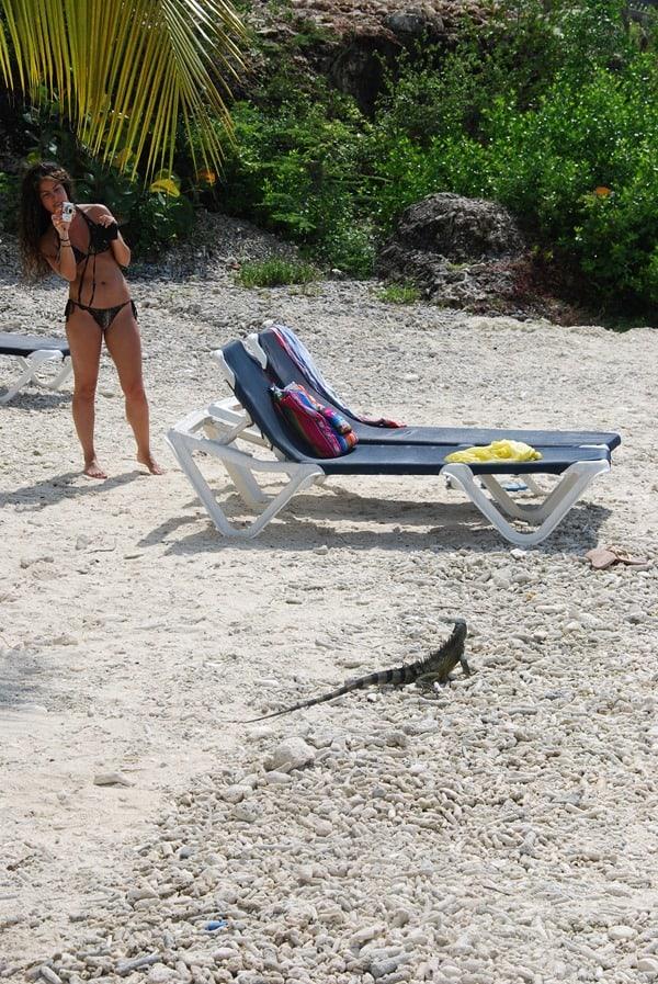 11_Besucher-am-Strand-Playa-Porto-Mari-Beach-Curacao-Karibik-Meer