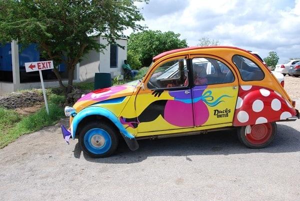 21_bunte-Ente-auf-dem-Parkplatz-am-Playa-Porto-Mari-Beach-Curacao-Karibik-Meer