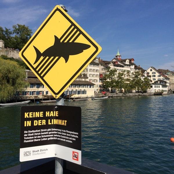 05_Keine-Haie-in-der-Limmat-Zuerich-Schweiz