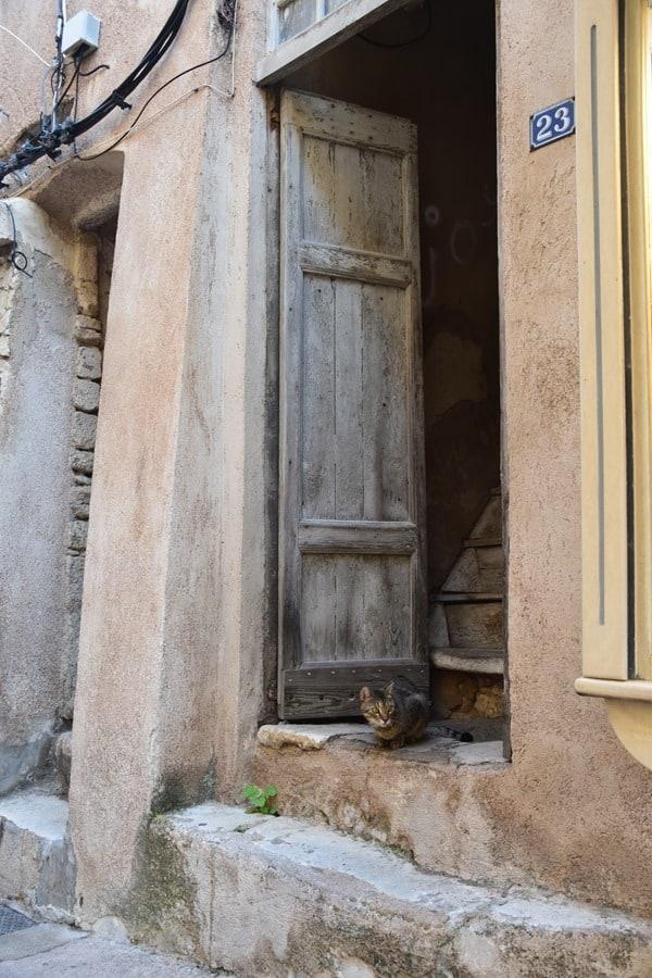 09_Katze-in-den-Gassen-von-Bonifacio-Korsika-Frankreich
