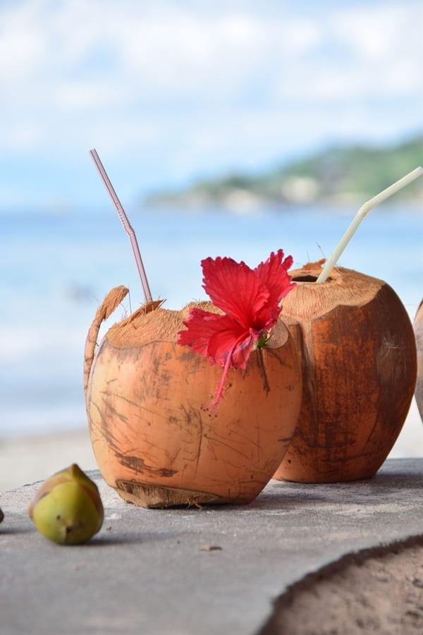 16_Kokosnuss-Strand-Beau-Mahe-Vallon-Seychellen