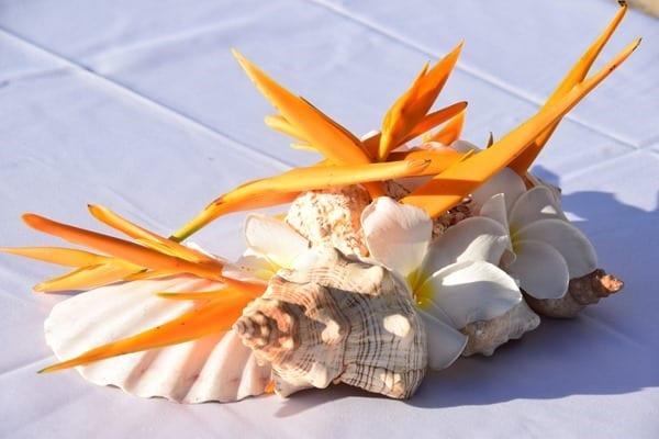 21_Muschel-Dekoration-Strand-Beau-Vallon-Mahe-Seychellen