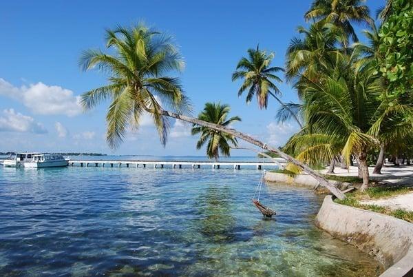 19_Flitterwochen-Malediven-Urlaub-Bootssteg-Palme[3]