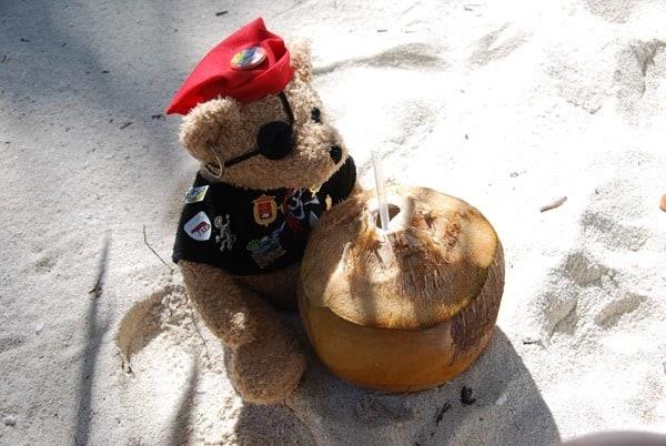 14_Maskottchen-Jack-probiert-Coco-Loco-Saona-Beach-Dominikanische-Republik