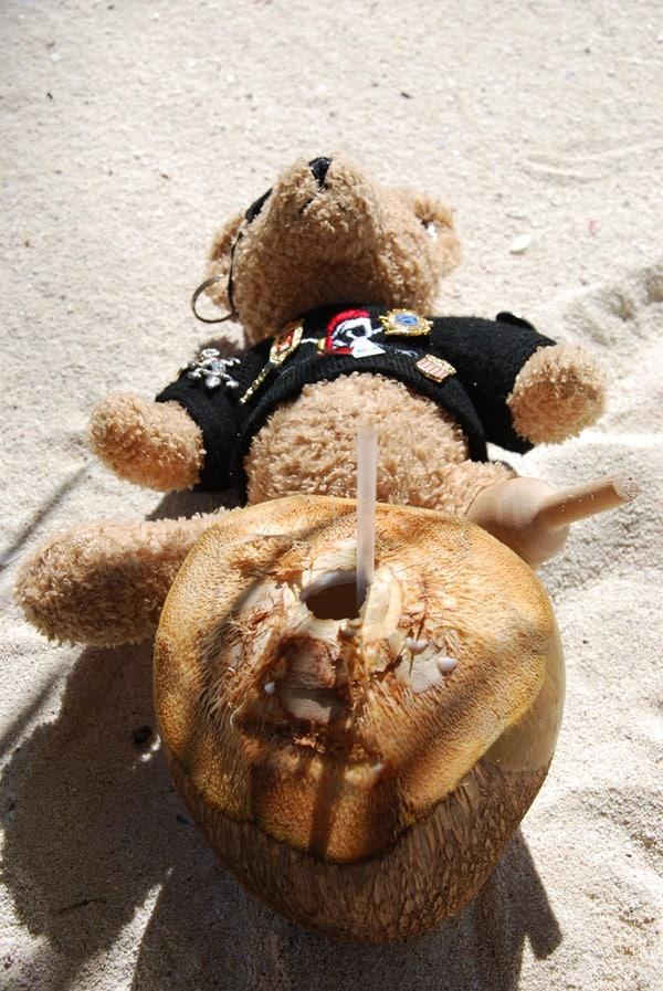 15_Maskottchen-Jack-findet-Coco-Loco-umwerfend-Saona-Beach-Dominikanische-Republik