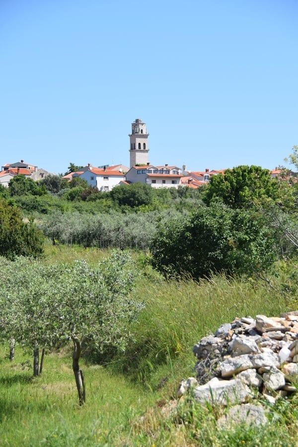 02_Natur-Premantura-Istrien-Kroatien