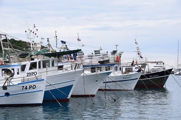 06_Hafen-Vrsar-Istrien-Koratien