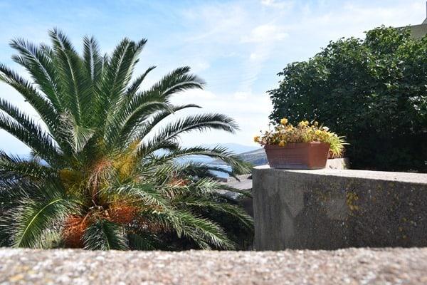 17_Klostergarten-La-Cattedrale-di-Sant'Antonio-Abate-Castelsardo-Sardinien-Italien