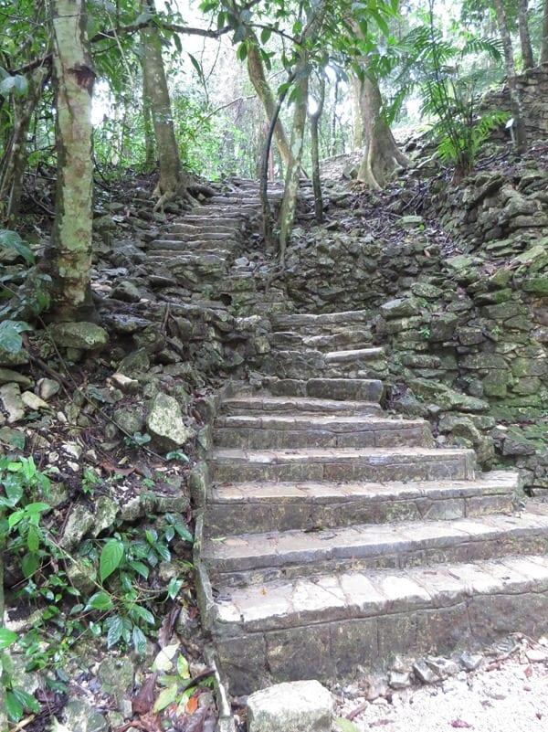11_Maya-Ruine-Palenque-Mexiko-Treppen
