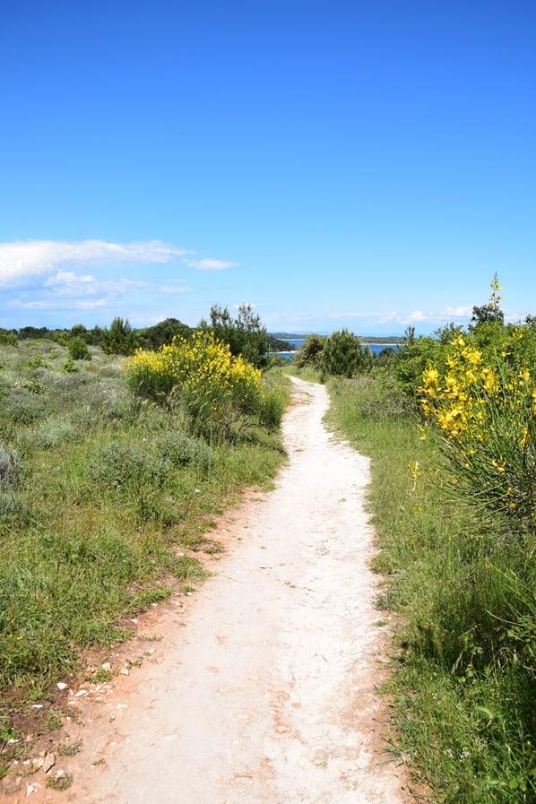 11_Wandern-Wanderweg-Naturpark-Kap-Kamenjak-Istrien-Kroatien