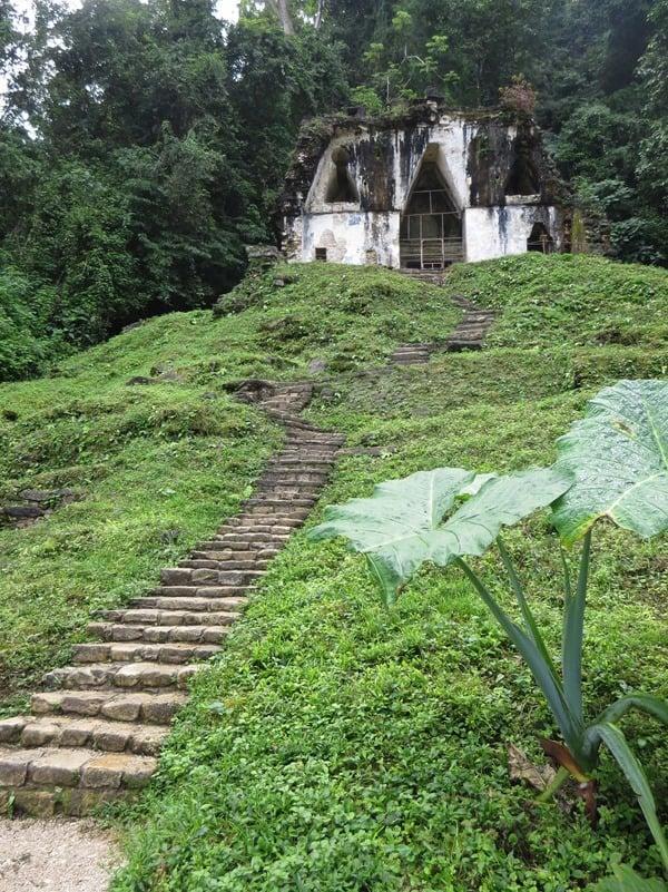 14_Blätterkreuztempel-Maya-Ruine-Palenque-Mexiko