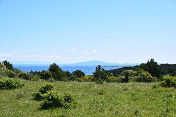 21_Naturpark-Kap-Kamenjak-Istrien-Kroatien