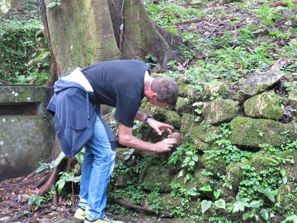 22_Geocaching-Urwald-Maya-Ruine-Palenque-Mexiko