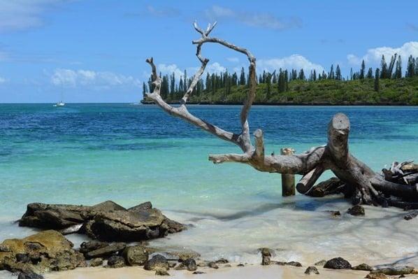 Strand-Kanumera-Bay-Ile-des-Pines-Neukaledonien
