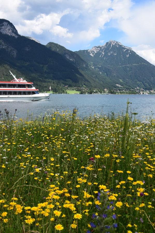25_Ausflugsschiff-Tirol-Almwiese-Achensee-Tirol-Oesterreich