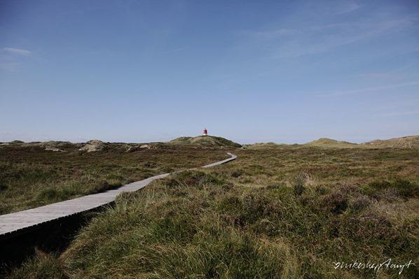 Amrum-Duenen-Nordsee-Nordfriesland