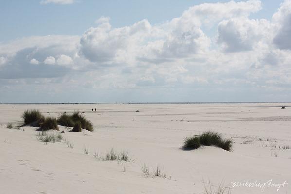 Amrum-Kniep-Nordsee-Nordfriesland