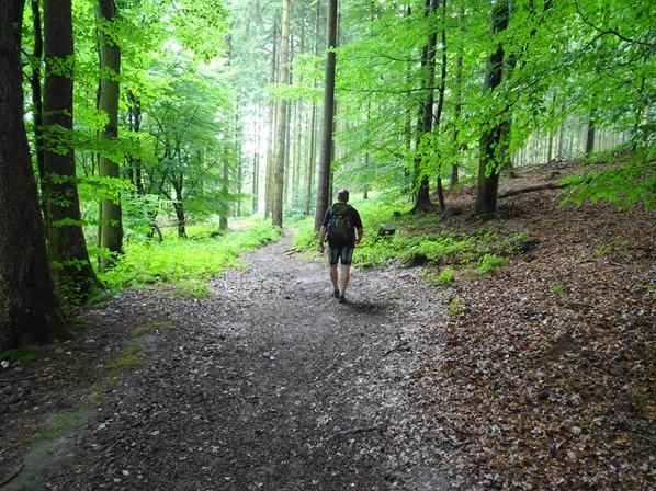 Wandern-in-Dithmarschen-Nordsee